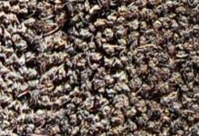 сива кокосова изтривалка сив кокос ествествен coir mats