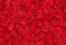 изтривалка червена червен килим под наем